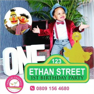Ethan_s_Sesame_Street_Themed_Party.jpg